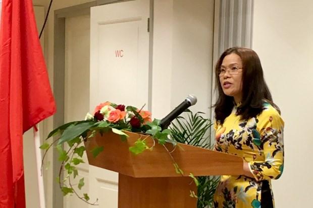 越南驻荷兰大使:越荷关系将日益向前发展造福两国人民 hinh anh 1
