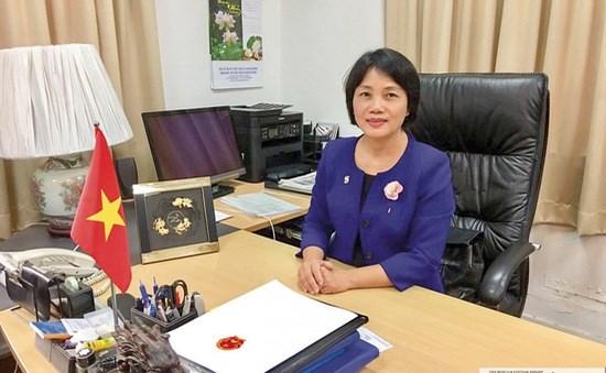 越南驻新加坡大使:充实越新战略伙伴关系内涵 推动两国关系迈上新高度 hinh anh 1