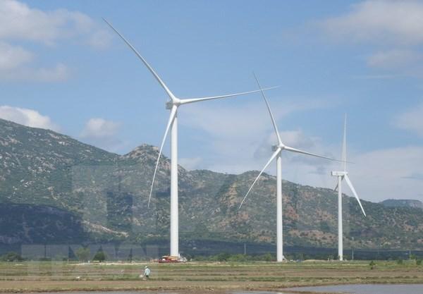 努力尽早把宁顺省建设成为可再生能源中心 hinh anh 2