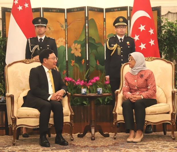越南政府副总理兼外交部长范平明分别会见新加坡领导人 hinh anh 1