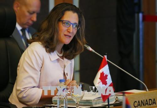 加拿大外长:希望深化与东盟的关系 hinh anh 1