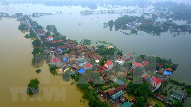 越南政府总理阮春福:河内应确保洪涝地区的环境卫生 hinh anh 2