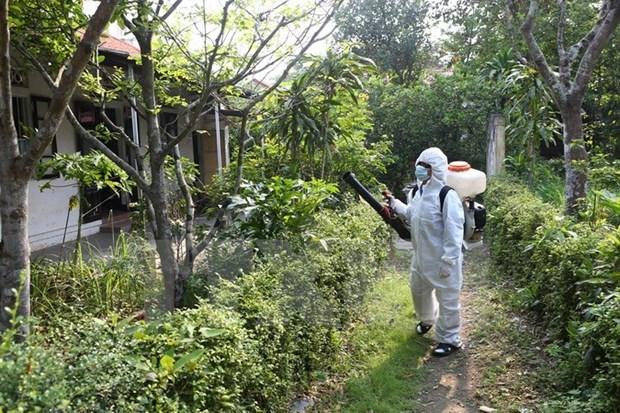 河内市进一步加强传染病防治工作的力度 hinh anh 1