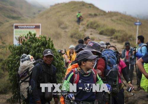 印尼6.4级地震: 1000多名被困登山人被疏散 hinh anh 2