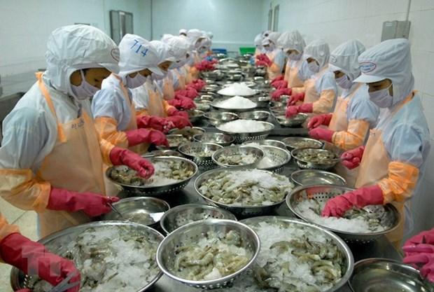 越南虾类和鲍鱼将被实施《海产品进口监督程序》 hinh anh 1