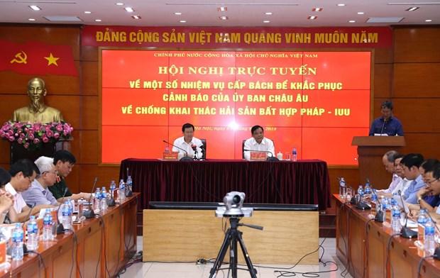 """越南多措并举解决越南渔业""""黄牌""""警告问题 hinh anh 1"""
