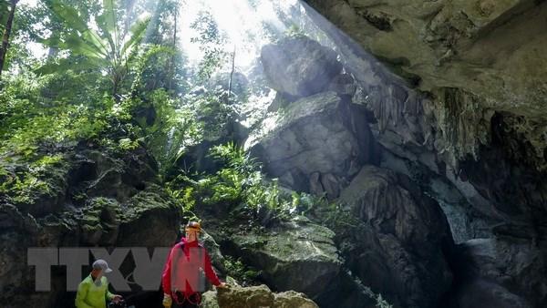 越南广平省在风雅-格邦区内发现44个新洞穴 hinh anh 1