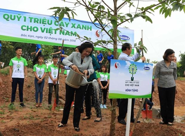 """""""越南一百万颗树基金""""计划在北件省开展植树活动 hinh anh 1"""