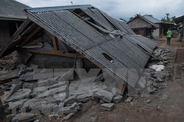 印尼7级地震:至少82人死亡 数百人受伤 hinh anh 1