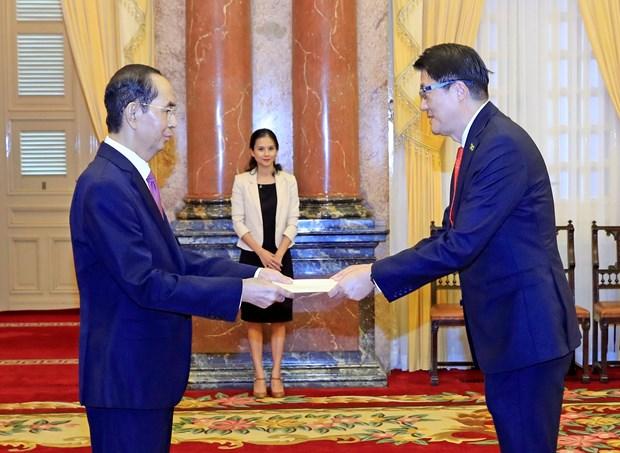 越南国家主席陈大光接受九国新任驻越大使递交国书 hinh anh 1