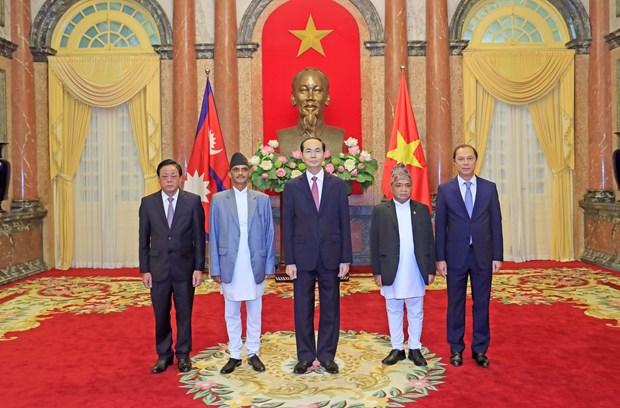 越南国家主席陈大光接受九国新任驻越大使递交国书 hinh anh 2