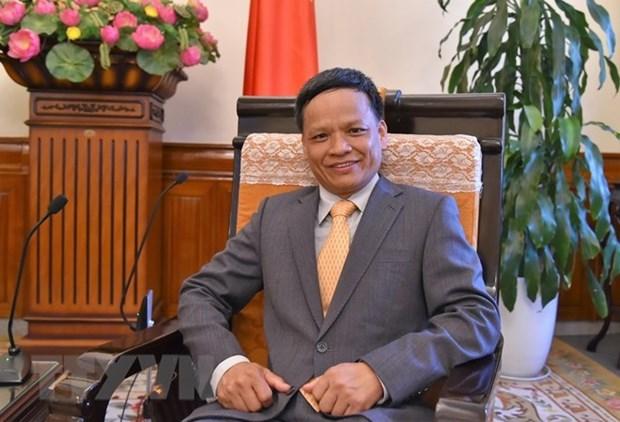 越南为联合国国际法委员会的多样性作出贡献 hinh anh 1