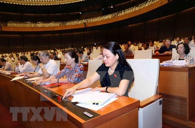 越南国会通过有关2019年法律法令制定计划和2018年法律法令制定计划调整方案的决议 hinh anh 1