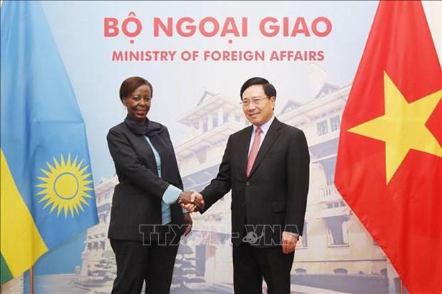 越南政府副总理兼外长范平明与卢旺达外交合作部长穆希基瓦博举行会谈 hinh anh 1