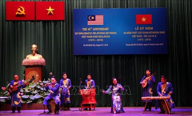 越南与马来西亚建交45周年庆祝活动在胡志明市举行 hinh anh 1