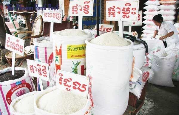今年前7个月柬埔寨大米出口量达29.78万吨 hinh anh 1