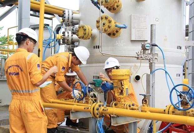 2018年前7个月越南国家油气集团超额完成生产经营目标 hinh anh 1