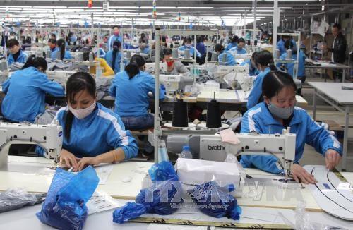 CPTPP和EVFTA为越南纺织服装业创造巨大的投资吸引力 hinh anh 1