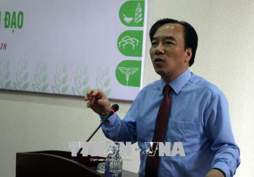 越南各个宗教在环保和人道救助方面起着重要作用 hinh anh 2