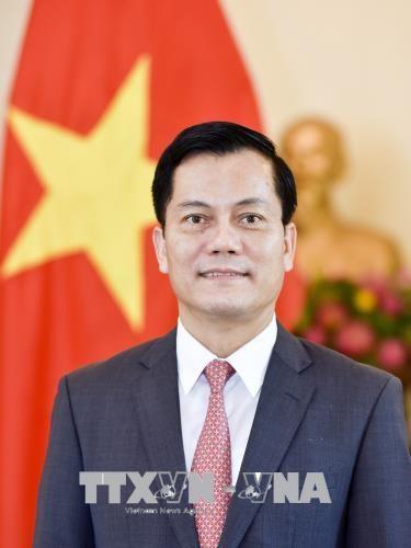 越南驻美国大使何金玉:维持越美全面伙伴关系蓬勃发展态势 hinh anh 1