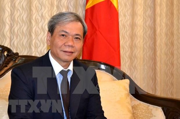 越南驻印度大使: 越印全面战略伙伴关系正呈现出务实有效的发展态势 hinh anh 1