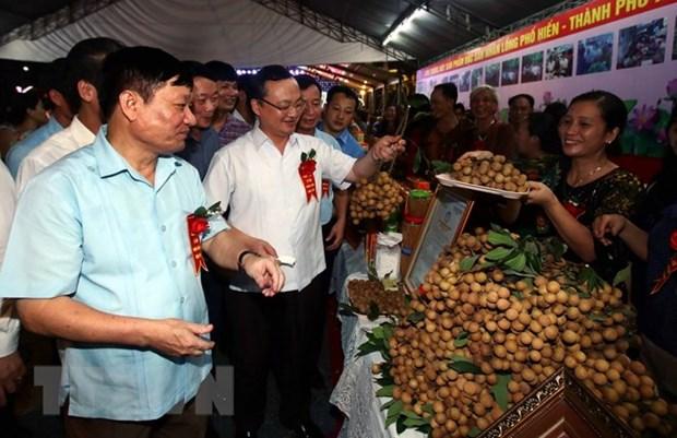 2018年越南兴安省龙眼节吸引数百家国内外企业和商人参观购物 hinh anh 1