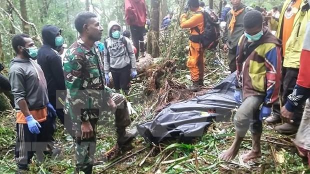印尼一架小型飞机坠毁致8人死亡 hinh anh 1