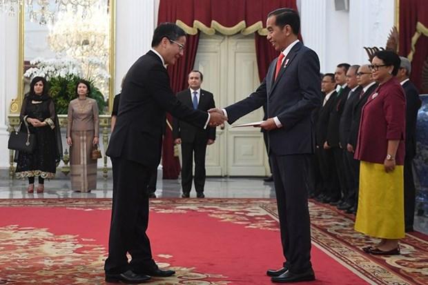 印度尼西亚总统:希望同越南领导人深入讨论共同关注的双边和多边问题 hinh anh 1