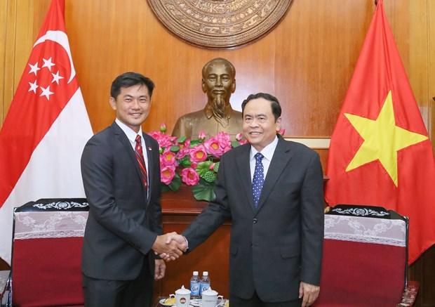 促进越南与新加坡关系发展 hinh anh 1