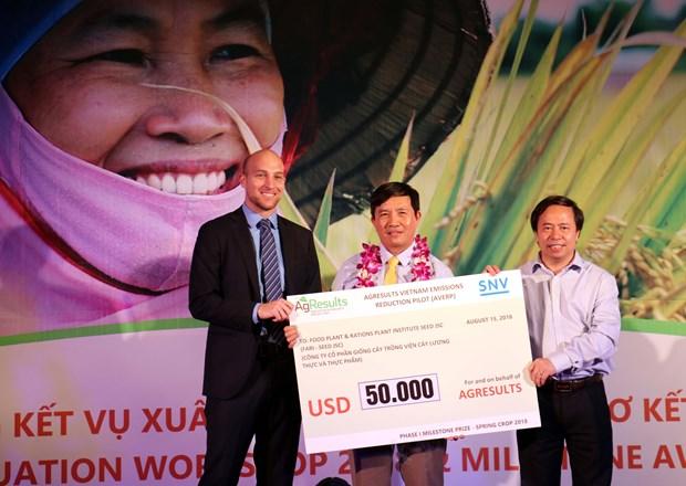 大米可持续生产与减少温室气体排放项目颁奖仪式在太平省举行 hinh anh 1