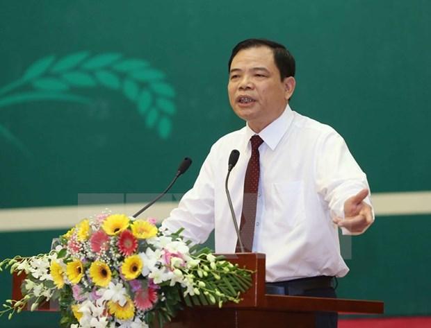 越南政府副总理王廷惠:成立合作社是强制性任务 hinh anh 2