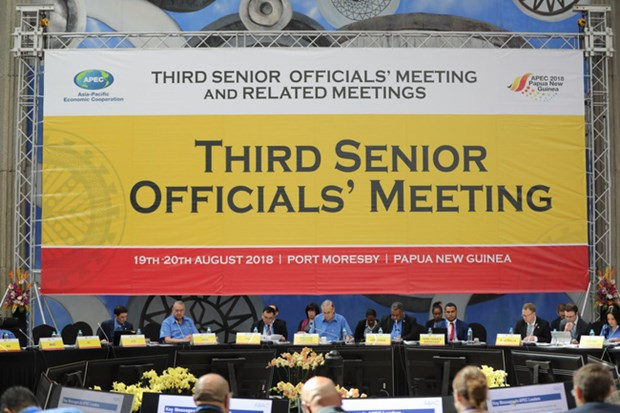 越南积极参加APEC会议 力争加强地区经济对接与合作 hinh anh 1