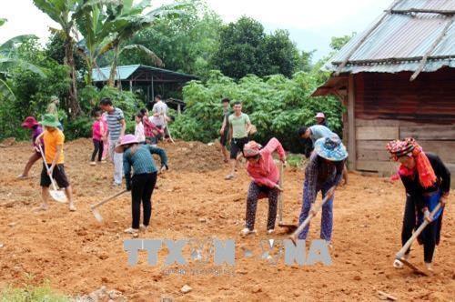 莱州省快速展开灾后重建 力争做好开学准备 hinh anh 1