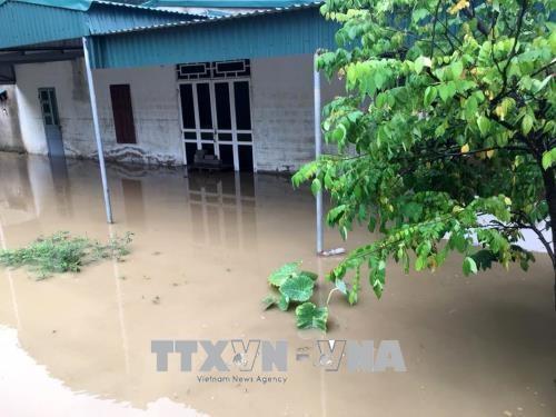 继续寻找洪水中失踪人员看望慰问洪水受灾群众 hinh anh 1