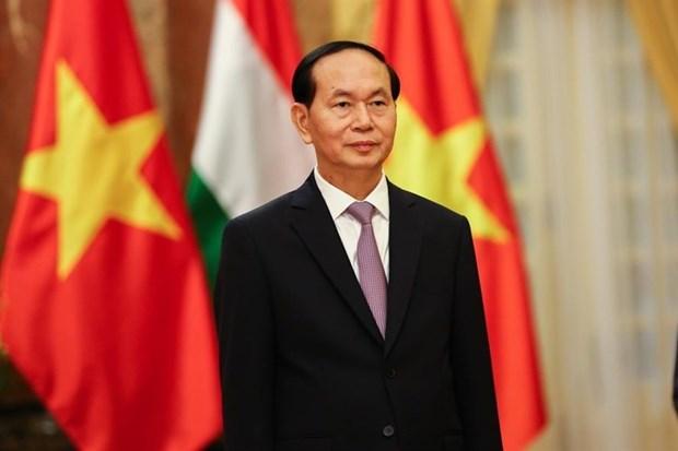 陈大光主席埃塞俄比亚和埃及之行:深化越南与非洲国家之间的传统友谊 hinh anh 1
