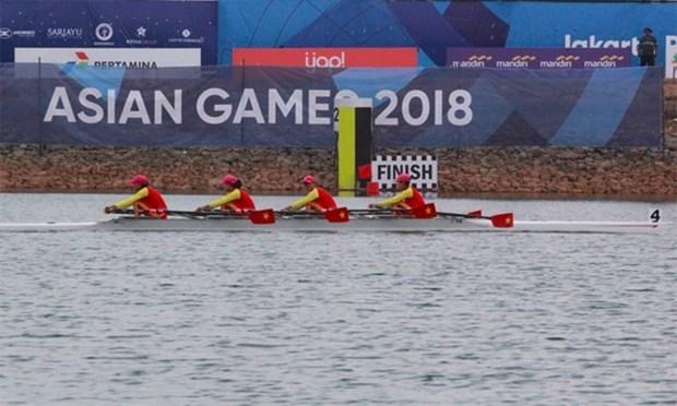 ASIAD 2018:越南代表团获喜人成绩 赛艇项目斩获首金 hinh anh 1