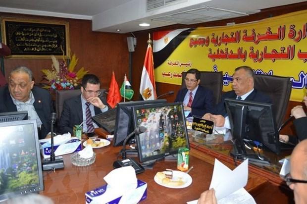 越南与埃及将扩大在多个领域中的合作关系 hinh anh 1