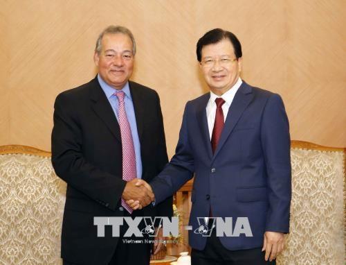 郑廷勇副总理:越南鼓励投资商参加电源发展项目 hinh anh 1