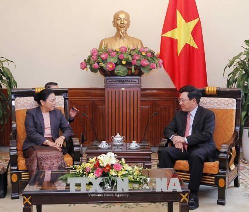 越南政府副总理兼外交部长范平明会见老挝外交副部长 hinh anh 2