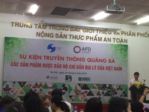 越南进一步加大地理标志产品保护工作力度 hinh anh 1