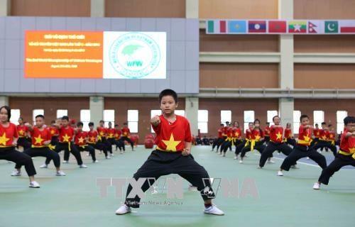 2018年第二次越南传统武术国际锦标赛正式开赛 hinh anh 2