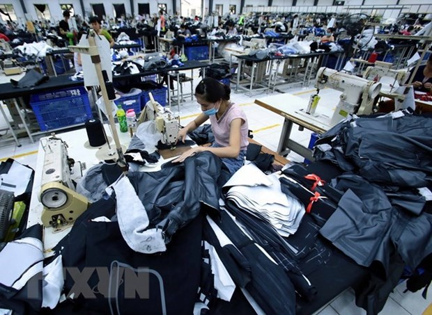 埃塞希望吸引更多越南投资商对埃塞进行投资 hinh anh 1