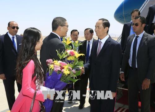 越南国家主席陈大光开始对埃及进行国事访问 hinh anh 1