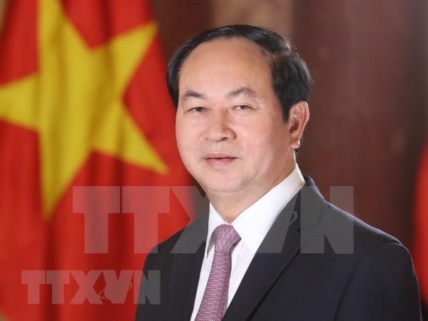 越南国家主席陈大光访问埃及:越南与埃及在各领域的合作潜力巨大 hinh anh 1