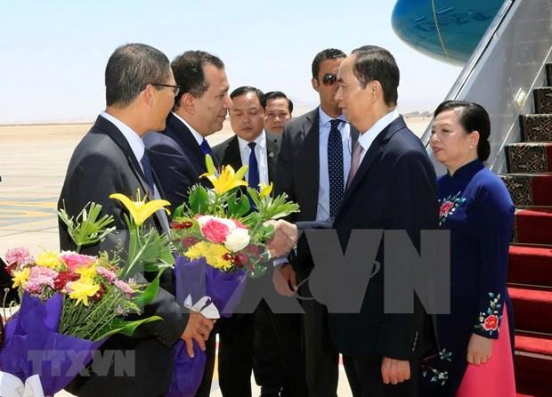 埃及媒体:陈大光访埃之旅将为两国合作开启新篇章 hinh anh 1