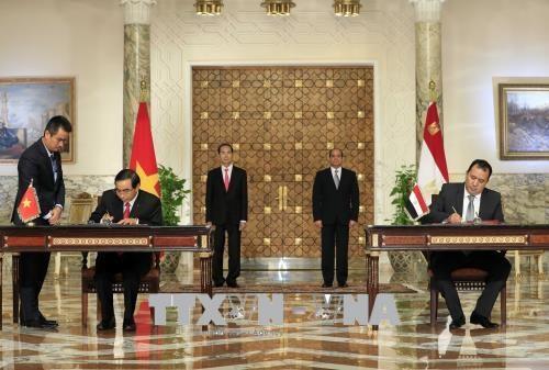 越南国家主席陈大光与埃及总统阿卜杜勒·法塔赫·塞西举行会谈 hinh anh 3