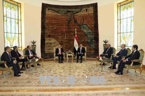 越南国家主席陈大光与埃及总统阿卜杜勒·法塔赫·塞西举行会谈 hinh anh 1
