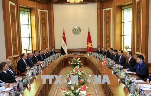 越南国家主席陈大光与埃及总统阿卜杜勒·法塔赫·塞西举行会谈 hinh anh 2