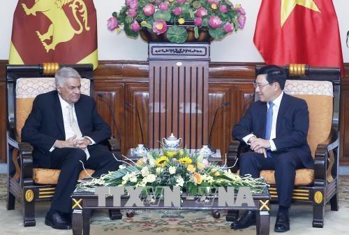 越南政府副总理兼外交部长范平明会见斯里兰卡总理拉尼尔•维克勒马辛哈 hinh anh 2