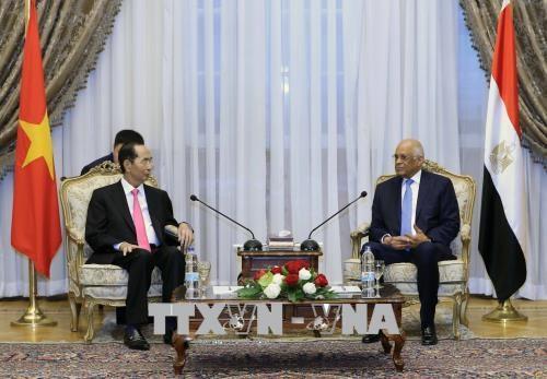 越南国家主席陈大光会见埃及议会议长 hinh anh 1